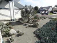 San Diego moon-scape landscaping, drought tolerant landscaping, san diego landscape design
