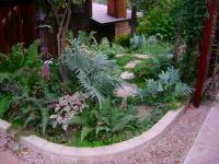san diego landscape design, San Diego Fern Gaden