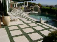 san diego landscape design, dymondia ground cover, mt. soledad