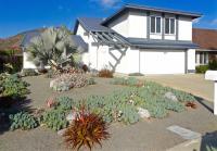 San Diego succulent landscape
