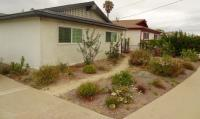 San Diego native habitat style landscape, san diego native landscaping, san diego native landscapes