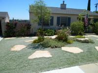 san diego landscape design, dymodia lawn