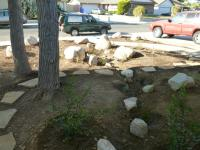 san diego native landscaping, san diego native landscapes