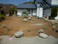 san diego succulent landscaping, low water landscaping, drought tolerant landscaping
