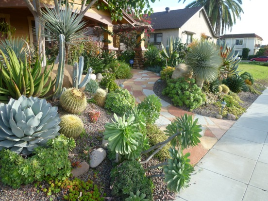 Plants Comprehensive | SelectLandscapesBlog